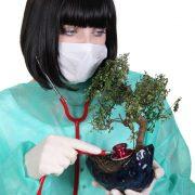 lekarz roślin